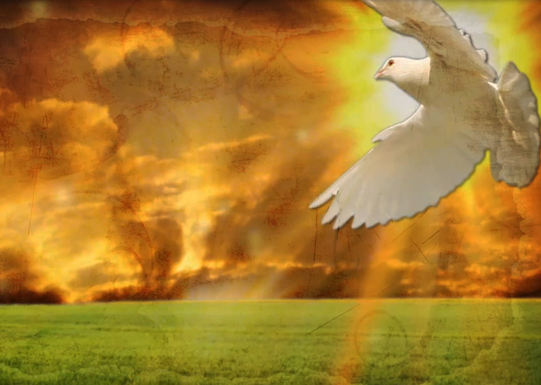 Pentecost Sunday - Seven Words for a Spirited Life
