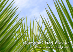 Questions God Asks Us Part 5: Who Do You Say That I Am?