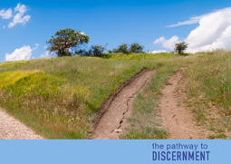 The Pathway to Discernment
