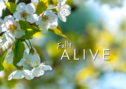 Easter: Fully Alive