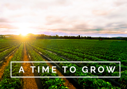 A Time to Grow Week 1: Patience