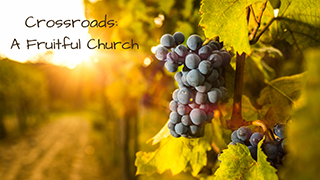 A Fruitful Church: Risk Taking Mission and Service
